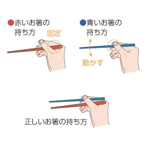 ウィルアシスト はじめてのお箸「八角くんとなじみちゃん」 矯正箸 子供用